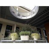 Ghiveci pentru balustrada, My Mood