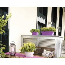 Jardiniera cu grilaj interior, My Mood